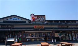 tokyo-shizuoka_R